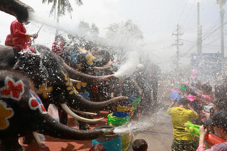 عکسی جالب از جشنواره آب بازی با فیل ها در تایلند