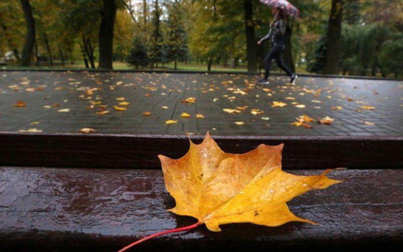 بارش های پاییزی در راهند