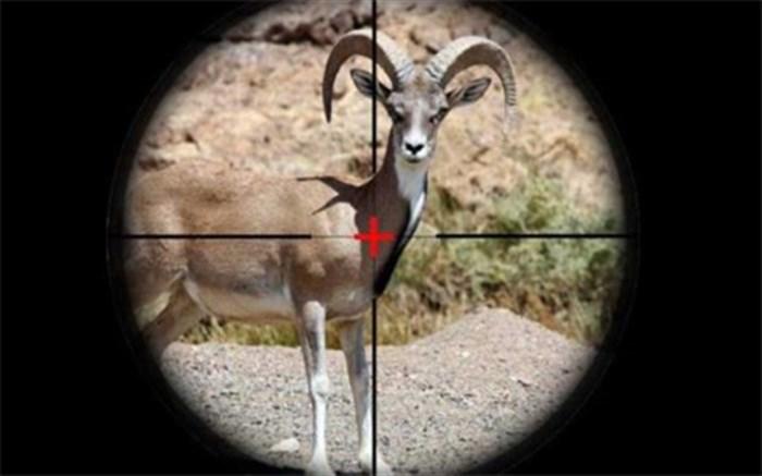 ممنوعیت شکار یا ممنوعیت عکسبرداری از شکار!