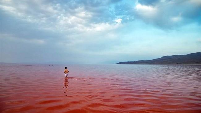 فائو به احیای دریاچه ارومیه کمک می کند