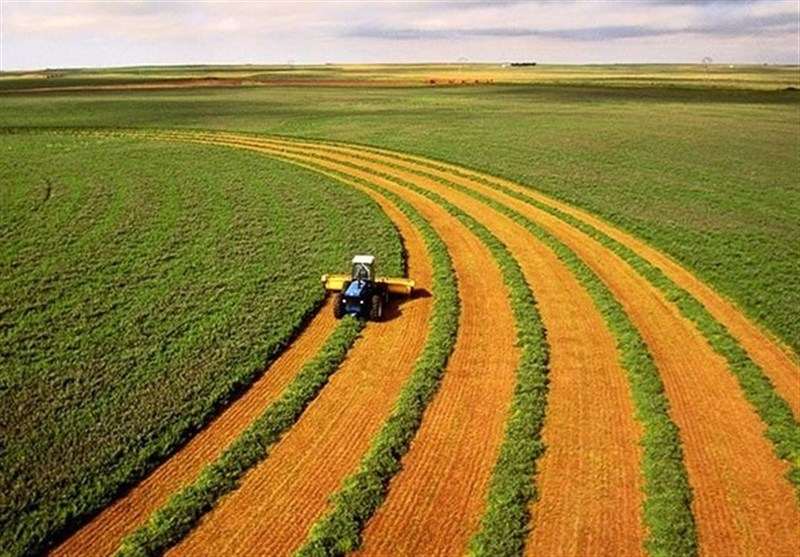 تاملی بر بخش کشاورزی ایران