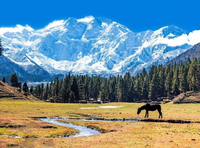 بلندترین کوهها برای کوهنوردی