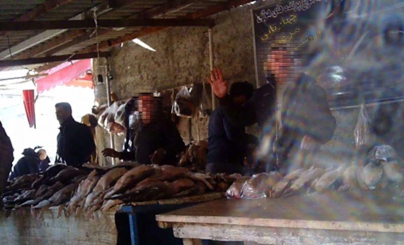 بازار فریدونکنار پاتوق لاکچریفروشان