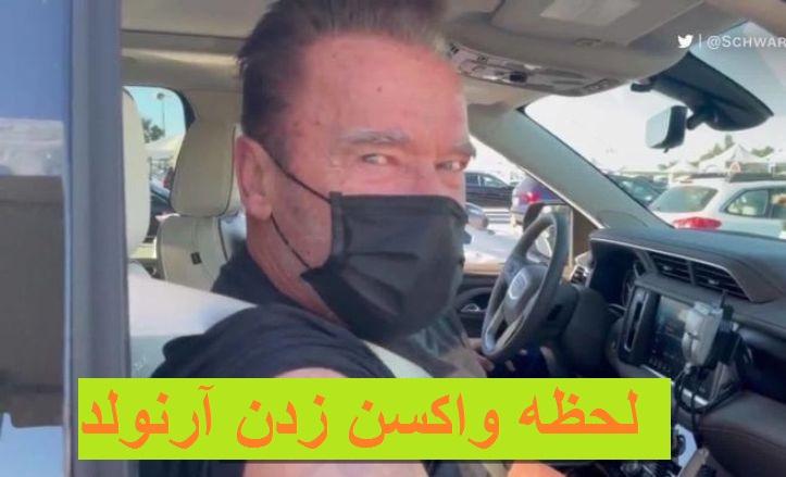 فیلم  لحظه واکسن زدن آرنولد ستاره هالیوود در خودرو