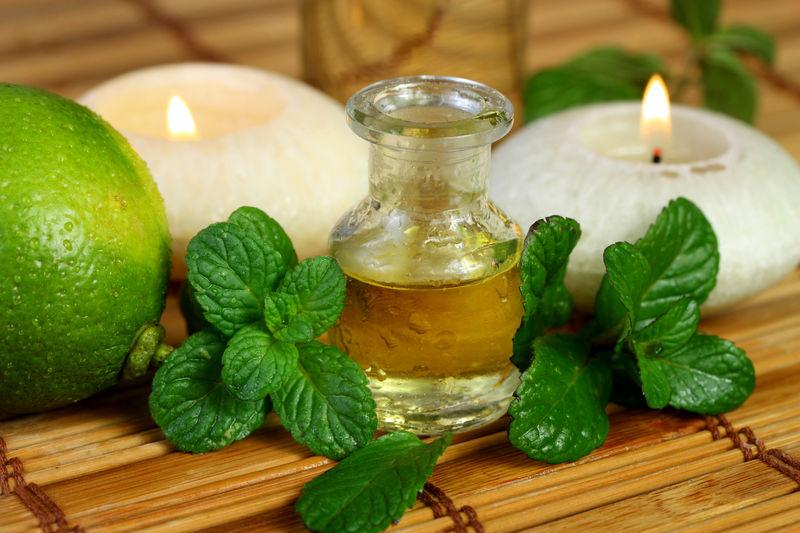 مهم ترین خواص دارویی نعناع برای بدن