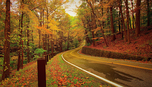 زیباترین و جذاب ترین جاده های ایران
