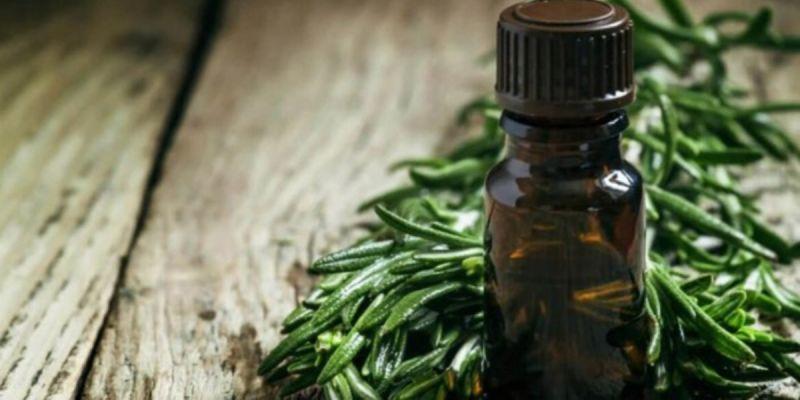 روش های ساده برای استفاده از روغن درخت چای برای مو