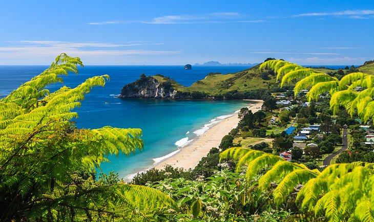 جاذبه گردشگری و دیدنی در نیوزلند