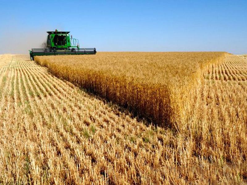 خدمت و عدم خدمت بعضی از دولتها به اقتصاد کشاورزی در استان گلستان