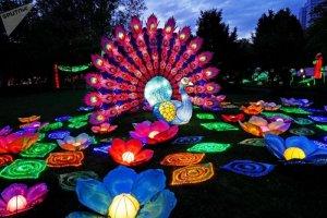 فستیوال فانوس های غول پیکر چینی در روسیه