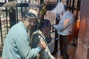 حمله شیر به مالک دهکده طبیعت قزوین در حضور معاون رئیس جمهور+فیلم