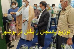ماجرای جنجالی توزیع بادمجان رایگان در بین مردم بوشهر