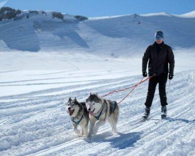 تصاویر زمستانی از قفقاز