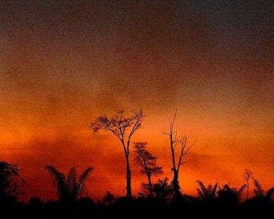 تصاویر دیدنی روز؛ از آتشسوزی آمازون تا سالگرد بمباران هیروشیما