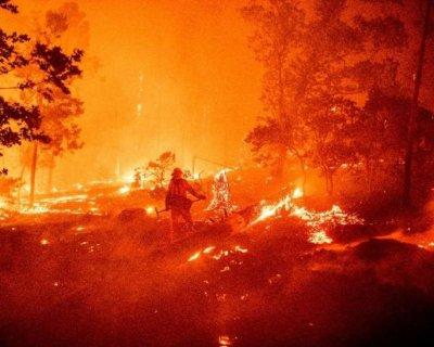 تصاویر دیدنی روز؛از آتش سوزی در جنگل های کالیفرنیا تا بازگشایی تاج محل