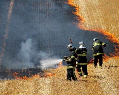 تصاویر دیدنی روز؛ از تیراندازی بوریس جانسون تا آتش سوزی مزارع گندم