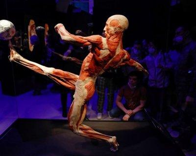 تصاویر دیدنی روز؛ از نمایشگاه اندام بدن تا زیردریایی یخ زده