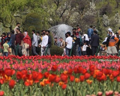 تصاویر دیدنی روز؛ از بزرگترین باغ گل لاله تا شورش ملکه زیبایی علیه ارتش