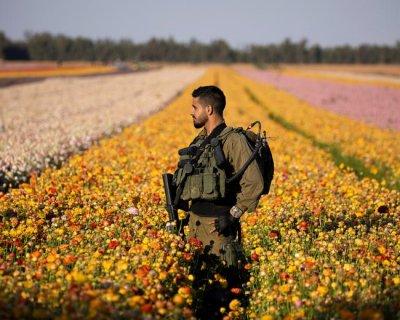 تصاویر دیدنی روز؛ از مزرعه گل های گلابی تا پرستش شاهزاده فیلیپ