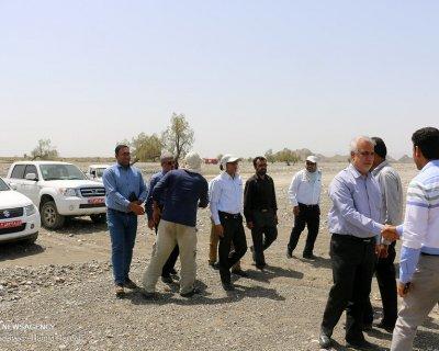 بازدید رئیس جهاد کشاورزی هرمزگان از روند مبارزه با ملخ های صحرایی