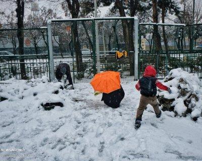 برف بازی در شهر ری