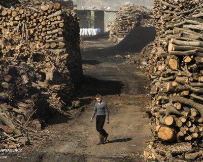 تصاویری از کارخانه تولید ذغال