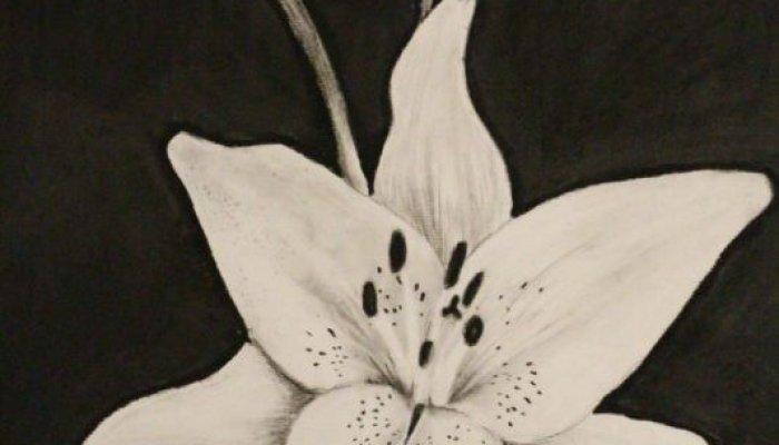تکنیک سیاه قلم نقاشی از طبیعت