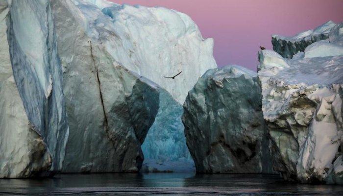 تصاویر | سفری به سرزمین گرینلند